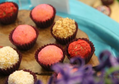 Nina Brigadeiro at 2016 Grapevine Chocolate Festival-4
