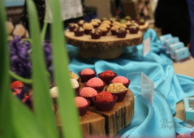Nina Brigadeiro at 2016 Grapevine Chocolate Festival-40